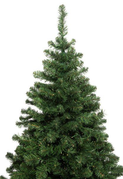 Dakota kerstboom voor buiten