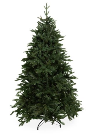 Kerstboom led arkansas