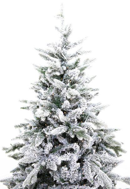 Canberra kerstboom met sneeuw
