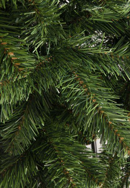 Kerstboomtakken Dakota
