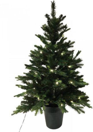 Mini kerstboom in pot